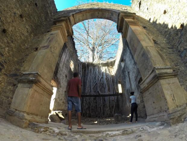 igreja de  Bom Jesus do Matozinho , no distrito de Barra do Guaicuí,  MG, onde uma  arvore Gameleira nasceu na parede do altar da igreja.  ( Foto Joel Silva / Folhapress.)